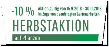 Aktion -15% auf Pflanzen