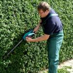 Schubert & Partner Gartengestaltung | Heckenschnitt