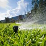Schubert & Partner Gartengestaltung | Bewässerungsdüse