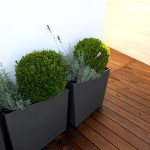 Schubert & Partner Gartengestaltung | Eternitgefäß