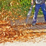 Schubert & Partner Gartengestaltung | Herbstlaub entfernen