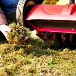 Schubert & Partner Gartengestaltung | Vertikutieren