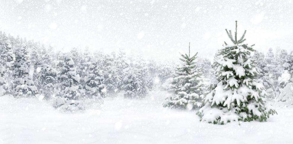 Winterliche Grüße…